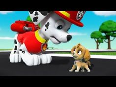Paw Patroll Cartoon Nickelodeon - Paw Patrol Full Episodes 2017 Animation Movies for Children # - YouTube