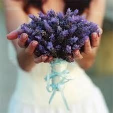 Bohemian purple bouquet of Spanish lavender Lavender Bouquet, Lavender Flowers, Lavender Blue, Lavender Fields, Green Wedding, Wedding Day, Boho Wedding, Wedding Bouquets, Wedding Flowers
