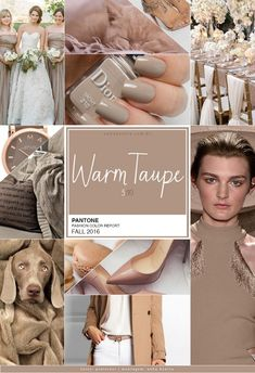 pantone-fall-2016-warm-taupe_MOOD-BOARD