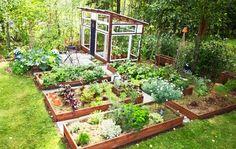 Organic Kitchen Gardening By Maitri Mehta Potager Garden, Veg Garden, Vegetable Garden Design, Garden Beds, Greenhouse Gardening, Kitchen Gardening, Lake Garden, Garden Cottage, Dream Garden