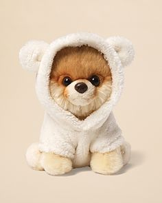 Gund Itty Bitty Boo Dog & Bear Suit