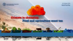 World Food Day 2016: Climate Is Changing, Food and Agriculture Must Too