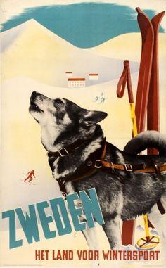 Sweden For Winter Sport Husky 1937 - original vintage skiing poster by Anders Beckman listed on AntikBar.co.uk