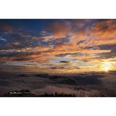 【taiwan1600】さんのInstagramをピンしています。 《國慶日的雲海啊啊啊啊啊啊啊 超棒!!!! 我的IG照片 肯定都PO的比我FB上的漂亮哈哈哈 其實我是有拍到大景的XDD 有FOLLOW我IG的可能才會看到比較漂亮的呵呵  #台灣 #Taiwan #攝影 #photography #旅行 #travel #雲 #天空 #cloud #sky #山 #mountain #雲海 #sea of clouds #日落 #sunset #sun #森林 #forest #小鹿 #deer #小鹿遊記 #traveling #diary #自然 #nature》