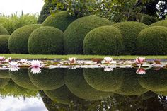 Spectacular and serene at the same time. Garden by Stijn Cornilly.