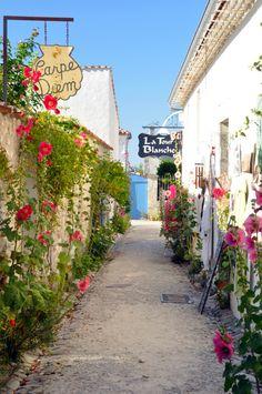 Le joli village de Talmont-sur-Gironde vous accueille sous la douceur du climat de Charente-Maritime. Classé parmi les plus beaux villages de France, Talmont-sur-Gironde et ses fortications surplombe l'estuaire de la Gironde. Une visite à ne pas manquer ! #CharenteMaritime #France