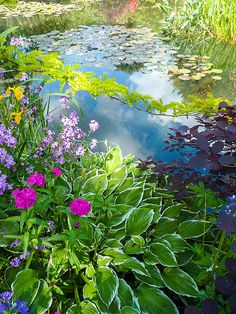 Monet's Garden, Giverny, France Join with us at International Research Community and Travel Guides = https://www.facebook.com/groups/1547062925573513/