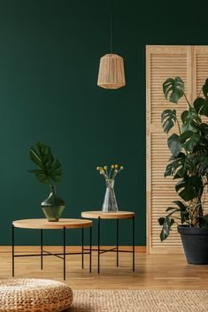 Home design trends in 2020 The Most Useful Home Decoration A few ideas The niche Living Room Green, Green Rooms, Living Room Colors, Living Room Decor, Bedroom Decor, Colour Schemes For Living Room Warm, Green Bedroom Paint, Green Dining Room, Interior Design Living Room Warm
