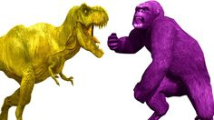 Color Dinosaur Vs Gorilla Real Fight Short Movie For Children Colors King Lion Tiger Songs For Kids http://youtu.be/PMuVQRTS1Nc