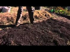 No dig garden construction - workshop  Fantastic video. 11 minutes of your time, and you'll never need to ask any more questions about building a no-dig bed again!