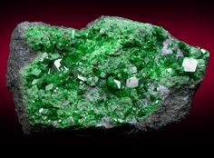 Uvarovite with Large Crystal - The Mineral and Gemstone Kingdom