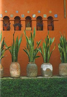 Inspiration from Mexican Interior Design, Museo Robert Brady by svanes Mexican Interior Design, Mexican Designs, Mexican Hacienda, Hacienda Style, Hacienda Decor, Mexican Garden, Mexican Patio, Mexican Home Decor, Spanish Style Homes