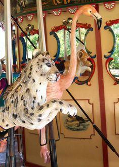 .Nashville Zoo - Wild Animal Carousel