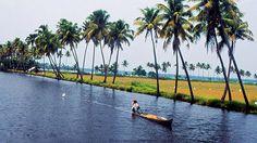 Backwater Stretches of Kerala | Kerala Tourism