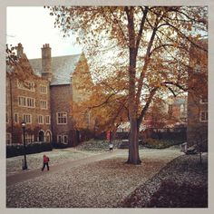November 2013. Cornell University, College Campus, November 2013, Always Learning, Acre, Things To Do, Mansions, Landscape, World
