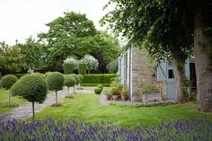 emma-burns-converted-barn-country-house-colefax-fowler-garden-february-14