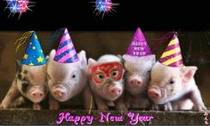 Happy New Year Graphics Baby Cocoon Pattern, Crochet Baby Cocoon, Happy New Year Gif, Happy New Year Images, New Year Pictures, Happy Everything, Nouvel An, Little Pigs, Christmas And New Year