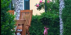 Lavantter Spargel Stenrath Kärntner Spargel Kontakt Outdoor Chairs, Outdoor Furniture, Outdoor Decor, Home Decor, Farm Shop, Asparagus, Decoration Home, Room Decor, Garden Chairs