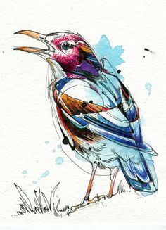 """Squawking Bird  5""""x7"""" Original Small Watercolor Art Painting India ink, watercolour paint, Tombow markers, dye.  http://www.etsy.com/shop/AbbyDiamondDraws"""