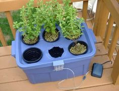 How I Built My Hydroponic System. Starting a vegetable garden. Hydroponic growing system built and the veggies.Here's about building a hydroponics system. Hydroponic Farming, Hydroponic Growing, Growing Plants, Aquaponics Plants, Aquaponics Greenhouse, Hydroponic Tomatoes, Indoor Hydroponics, Permaculture, Homemade Hydroponic System