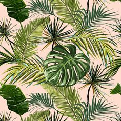 High quality peel and stick removable self adhesive wallpaper/ Palm leaves on pink background wallpa