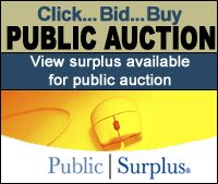 government auctions