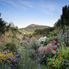A  Welsh garden with a view : @jasoningram