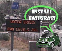 #easigrass #savewater #somersetwest Somerset West, Save Water, Instagram Posts