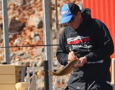 Cliff Pace with his fourth, and final, bass on day three of the 2013 Bassmaster Classic