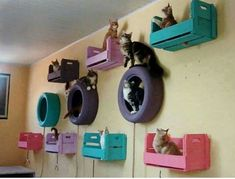 Cat room ideas that prove you can make a fun cat playground on a tight budget. G… Cat room ideas that prove you can make a fun cat playground on a tight budget. Great DIY cat projects for kids. Cool Cats, Cool Cat Trees, Crazy Cat Lady, Crazy Cats, Cat Play Rooms, Toy Rooms, Cat Tree Plans, What Cats Can Eat, Cat Wall Shelves
