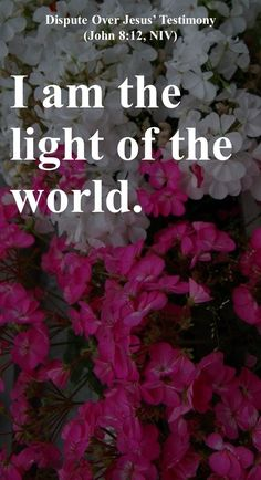 I am the light of the world.