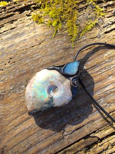 Large Ammonite with Australian Opal Raw Gemstone by lanternmoss