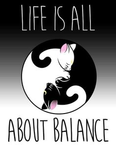 Cats and Yin Yang. Two of my favorite things in the world. This could also be translated into a great tattoo idea!
