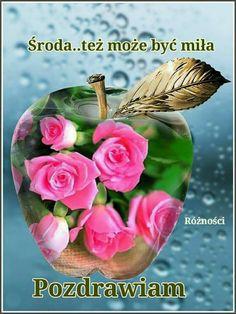 Wednesday, Plants, Dance, Humor, Good Night, Beautiful Flowers, Bonito, Flowers, Dancing