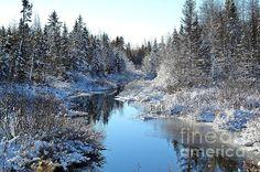 Winter Stream by J L Kempster  Taken in Quispamsis NB Canada #canada, #winter