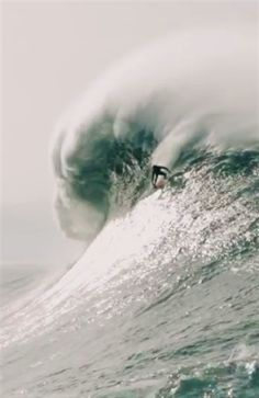 Nazaré Shows the World What It's Made of - Editor's rating: 73