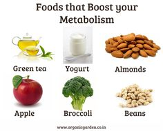 Organic foods that boost your Metabolism