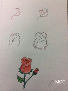Zeichnen lernen - New Ideas Art Drawings Sketches Simple, Easy Drawings, Pencil Drawings, Pencil Painting, Painting & Drawing, Kindergarten Drawing, Drawings Pinterest, Flower Art Drawing, Basic Drawing