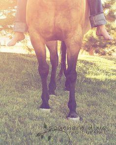 equine love. my senior photo's :)