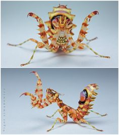"""spiny flower mantis by """"Blepharopsis"""" on deviantart. You can always rely on this photographer for AMAZING macro shots of exotic creatures."""