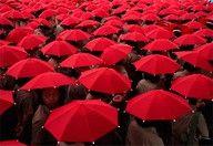 A sea of RED umbrellas