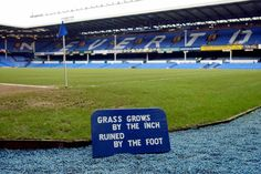 Everton FC to have 'Rolls Royce' of a pitch at Goodison Park