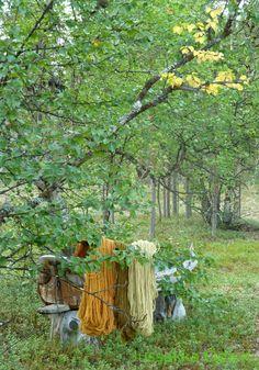 Kasvivärjättyjä lankoja ♥ Natural dyed wool #jussakka #kasityokortteli #wool #knitting #kasviväri #neulonta #käsityö www.facebook.com/... www.jussakka.fi