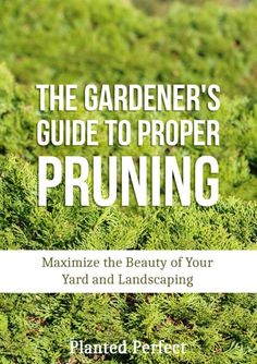 A nice primer on pruning, with lots of pics.