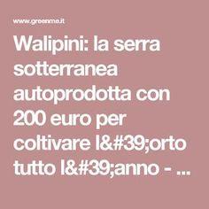 Walipini: la serra sotterranea autoprodotta con 200 euro per coltivare l'orto tutto l'anno - greenMe
