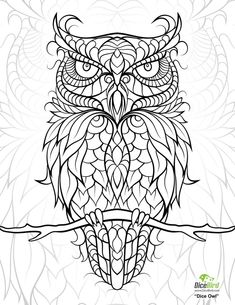 dicebird dice owl coloring page - Coloring Pictures To Color