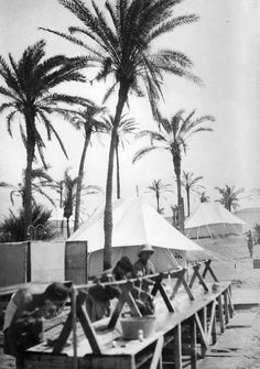 Czechoslovak 11th Infantry Battalion North African Campaign, Armed Forces, Destruction, Palms, World War Ii, Troops, Ww2, Military, Outdoor Decor