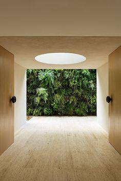 Nota JR: A vegetação pode ser um revestimento de parede para valorizar os ambientes.