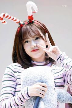 181104 Mokdong Kobaco hall fan signing #yujin #izone Kpop Girl Groups, Kpop Girls, Korean Girl Band, Cute Wallpapers Quotes, Sakura Miyawaki, Gfriend Sowon, Yu Jin, Japanese Girl Group, Kim Min