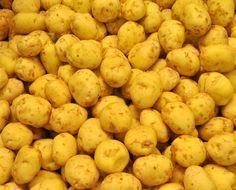 10 idées pour cuisiner les pommes de terre primeur de Noirmoutier